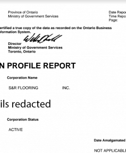 Ontario corporation profile report sample