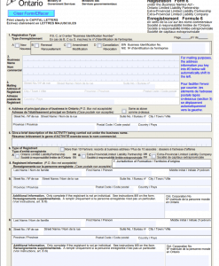 Ontario LLC Form 6